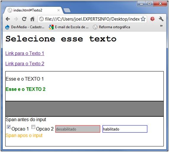 Página após aplicação dos seletores por estado