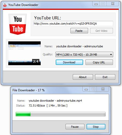 how to download videos from youtube using ant video downloader